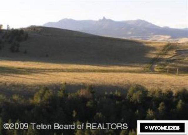 Dubois, WY 82513 :: RE/MAX The Group