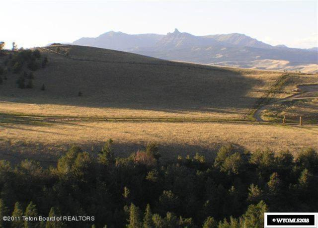 Lot 39 Spring Creek Trail, Dubois, WY 82513 (MLS #20182891) :: Real Estate Leaders