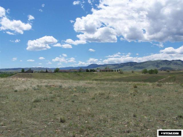 1180 Eagle View Drive, Buffalo, WY 82834 (MLS #20183025) :: RE/MAX The Group