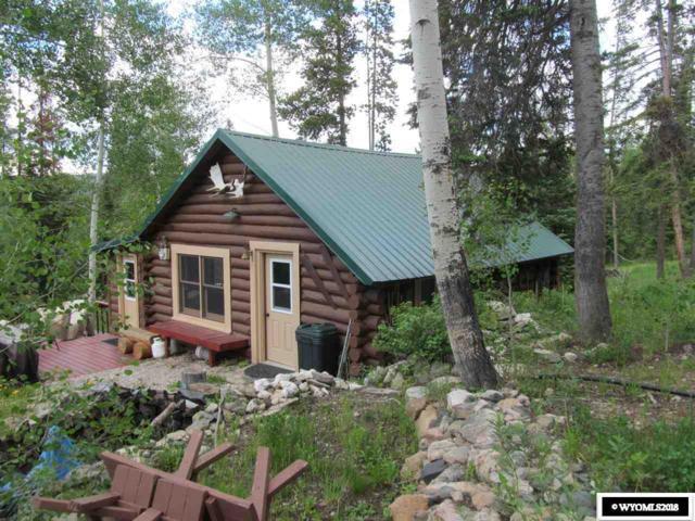 24 Mule Deer Drive, Ryan Park, WY 82331 (MLS #20183634) :: Lisa Burridge & Associates Real Estate