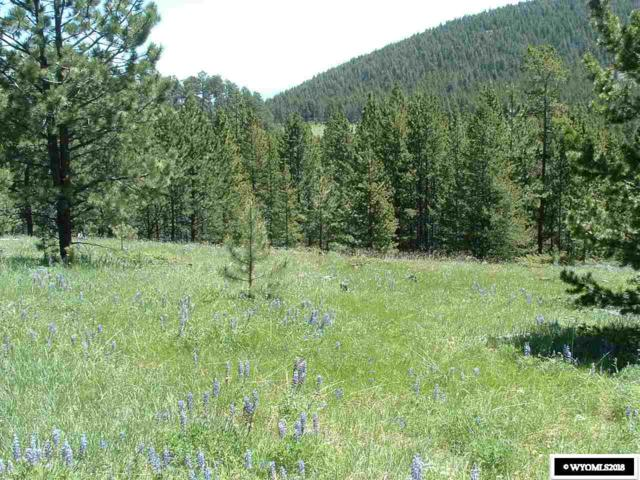 Lot 2 Guess Lane, Buffalo, WY 82834 (MLS #20183656) :: RE/MAX The Group