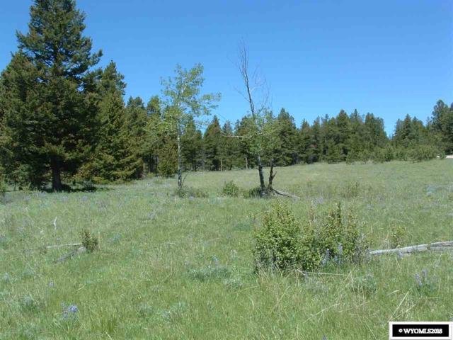 Lot 3 Guess Lane, Buffalo, WY 82834 (MLS #20183657) :: RE/MAX The Group