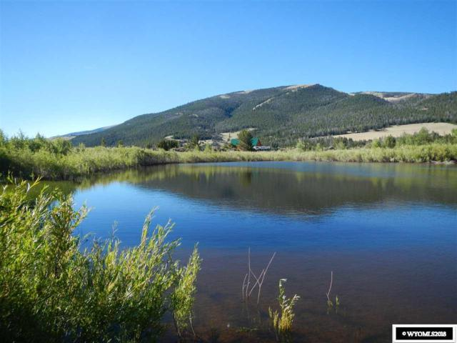 67 Hart Trail, Dubois, WY 82513 (MLS #20183770) :: RE/MAX The Group