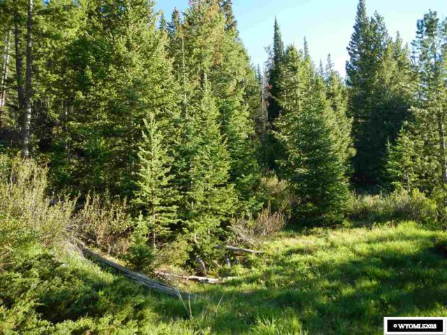 Lot 22 Long Creek Subdivision, Dubois, WY 82513 (MLS #20183781) :: Lisa Burridge & Associates Real Estate