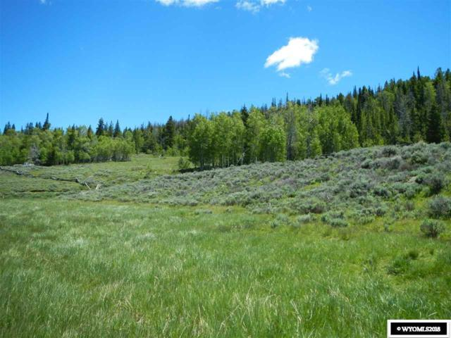 Lot 27 Long Creek Subdivision, Dubois, WY 82513 (MLS #20183782) :: Lisa Burridge & Associates Real Estate