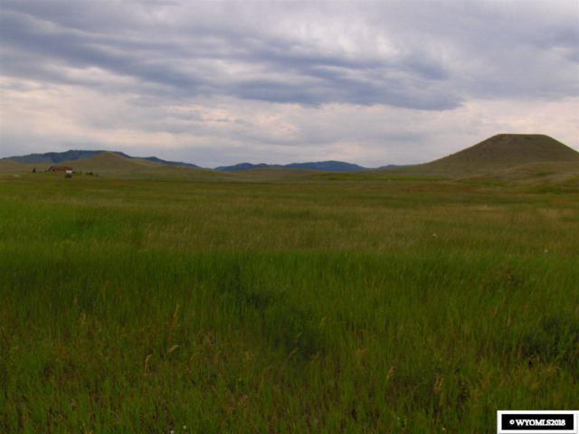 Amber Drive, Buffalo, WY 82834 (MLS #20184037) :: RE/MAX The Group