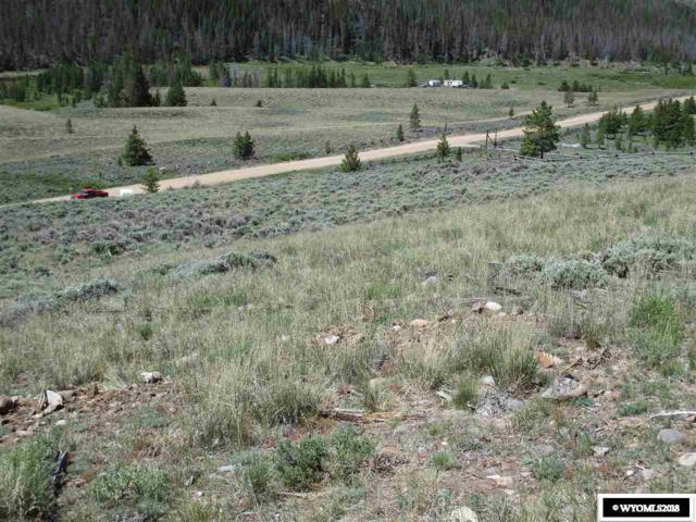 1574 Warm Springs Creek Road, Dubois, WY 82513 (MLS #20184661) :: Real Estate Leaders