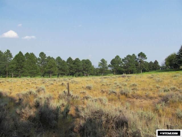 5th Addition Lots Old Baldy Club, Saratoga, WY 82331 (MLS #20184835) :: RE/MAX The Group
