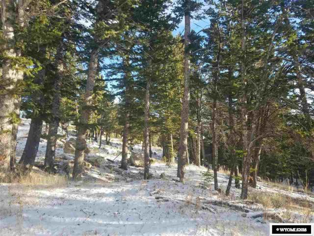 42 Spruce Creek Court, Dubois, WY 82513 (MLS #20186724) :: RE/MAX The Group