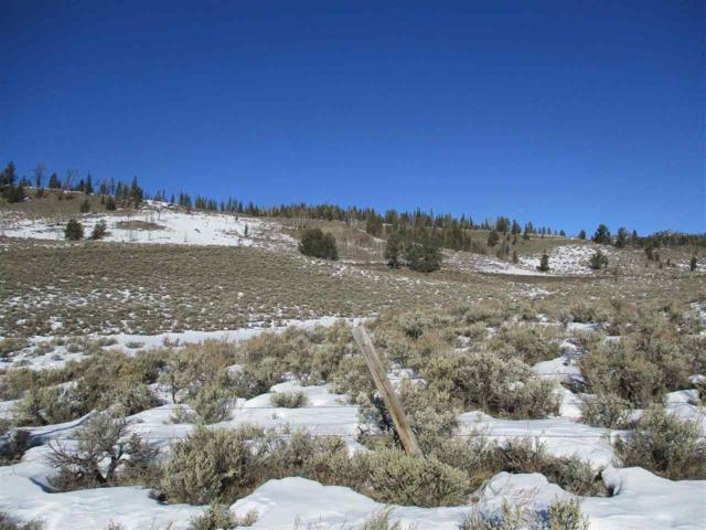 Lot 66 Long Creek Subdivision, Dubois, WY 82513 (MLS #20190241) :: Lisa Burridge & Associates Real Estate