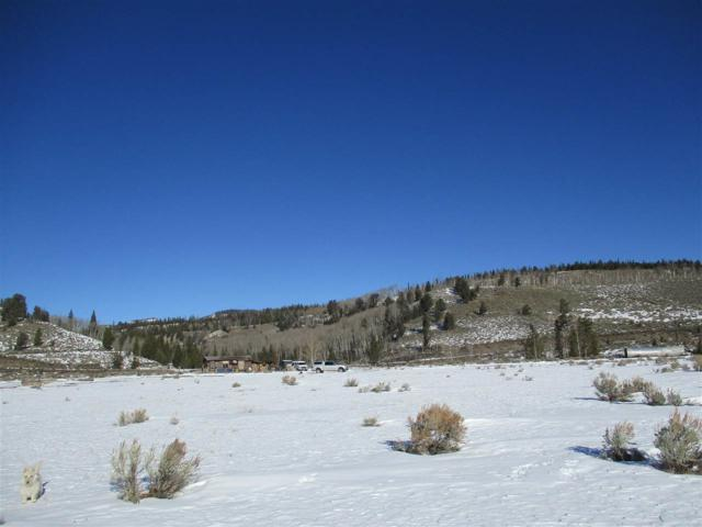 Lot 63 Long Creek Subdivision, Dubois, WY 82513 (MLS #20190243) :: Lisa Burridge & Associates Real Estate