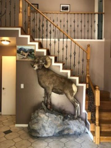 195 Pecan Drive, Green River, WY 82935 (MLS #20190346) :: Lisa Burridge & Associates Real Estate