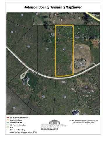 Lot 46 Amber Drive, Buffalo, WY 82834 (MLS #20191423) :: RE/MAX The Group