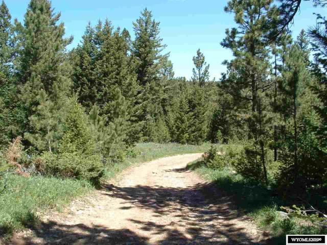 Lot 1 Guess Lane, Buffalo, WY 82834 (MLS #20192647) :: RE/MAX The Group