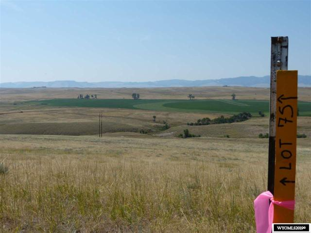 Lot 75 Shoreline Drive, Buffalo, WY 82834 (MLS #20193605) :: RE/MAX The Group