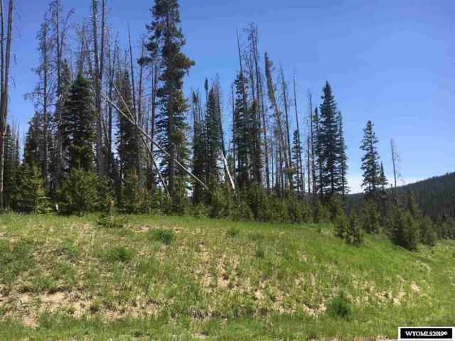 Lot 3 East Sierra Madre Subdivision, Encampment, WY 82325 (MLS #20194155) :: RE/MAX The Group