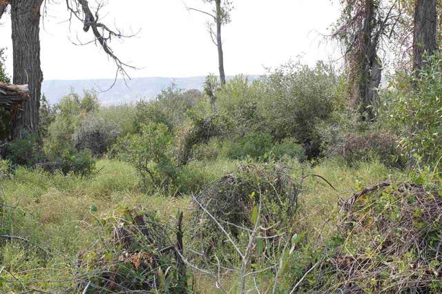 0000 Big Horn Road, Kinnear, WY 82516 (MLS #20200296) :: RE/MAX The Group