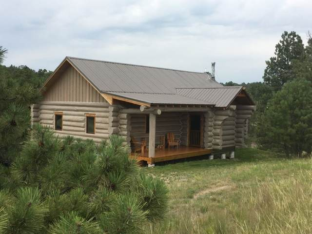 1215 Emigrant Hill Road, Glendo, WY 82213 (MLS #20200773) :: RE/MAX The Group