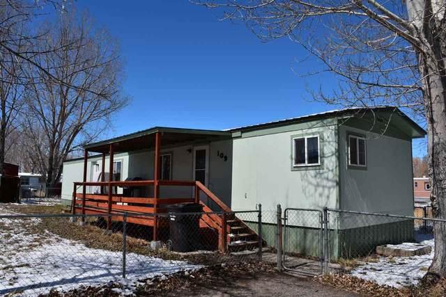 109 Firethorn Lane, Riverton, WY 82501 (MLS #20201680) :: Lisa Burridge & Associates Real Estate