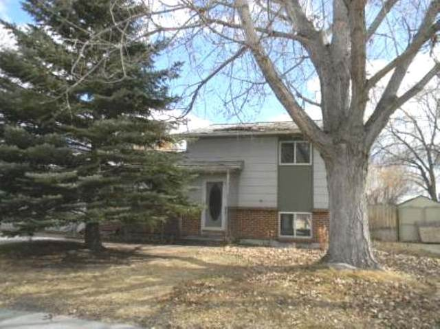 1019 Eastview Drive, Riverton, WY 82501 (MLS #20201858) :: RE/MAX The Group