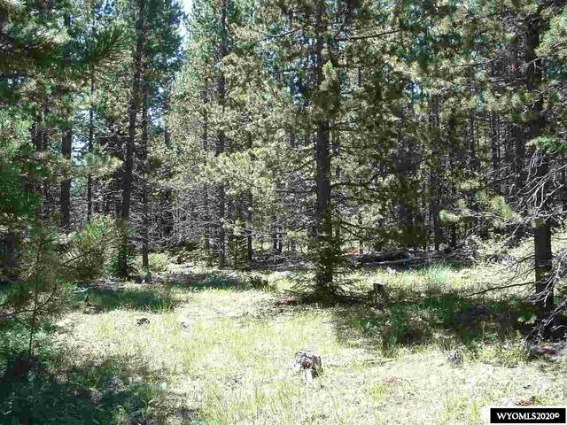 Lot 2 Guess Lane, Buffalo, WY 82834 (MLS #20202792) :: Lisa Burridge & Associates Real Estate
