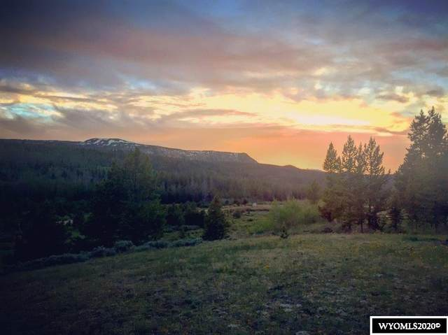 15 Paintbrush Drive, Dubois, WY 82513 (MLS #20206136) :: RE/MAX The Group