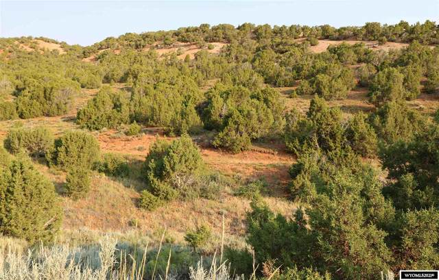16 Bristlecone Drive, Lander, WY 82520 (MLS #20214251) :: RE/MAX The Group