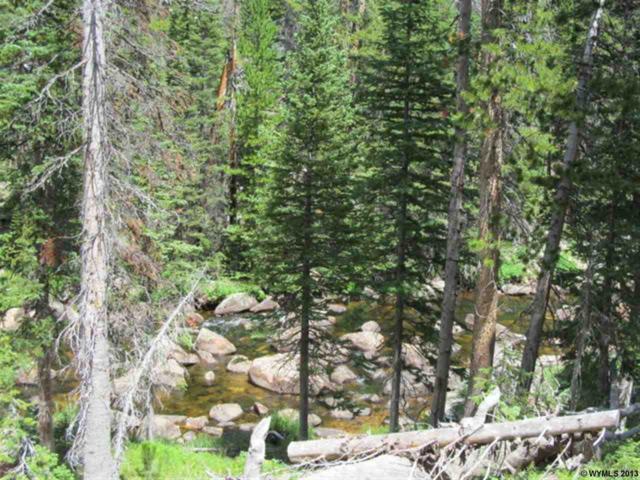 14 Overlook Retreat, Elk Mountain, WY 82324 (MLS #20134561) :: Lisa Burridge & Associates Real Estate