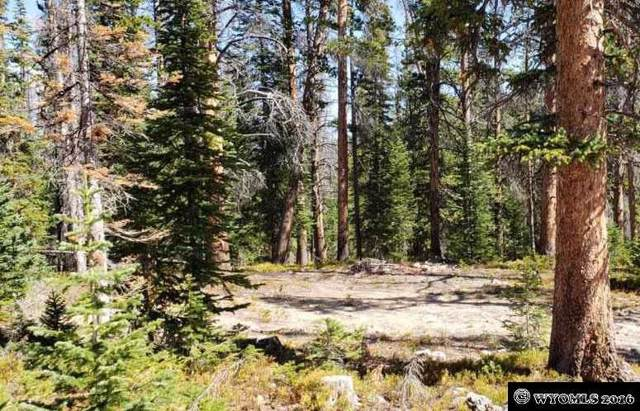 71 Overlook Retreat, Elk Mountain, WY 82324 (MLS #20141407) :: Lisa Burridge & Associates Real Estate