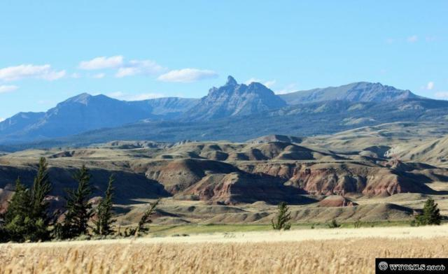00 Bald Mountain Rd. Lot 5 Ramshorn View, Dubois, WY 82513 (MLS #20154726) :: Real Estate Leaders