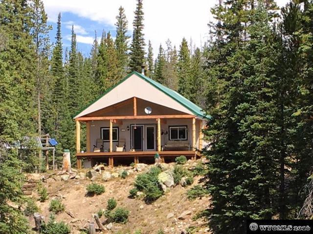 632 Forest Service Rd 105, Elk Mountain, WY 82324 (MLS #20164899) :: Lisa Burridge & Associates Real Estate