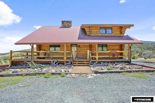196 Soda Springs Drive, Dubois, WY 82513 (MLS #20183294) :: RE/MAX The Group