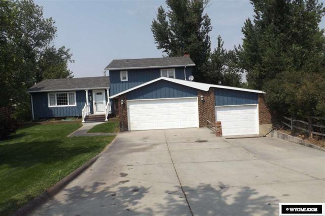 380 Aster Street, Casper, WY 82604 (MLS #20184814) :: Real Estate Leaders
