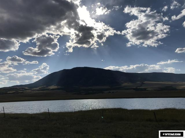 TBD Aspen Highlands Trail, Elk Mountain, WY 82324 (MLS #20185208) :: RE/MAX The Group