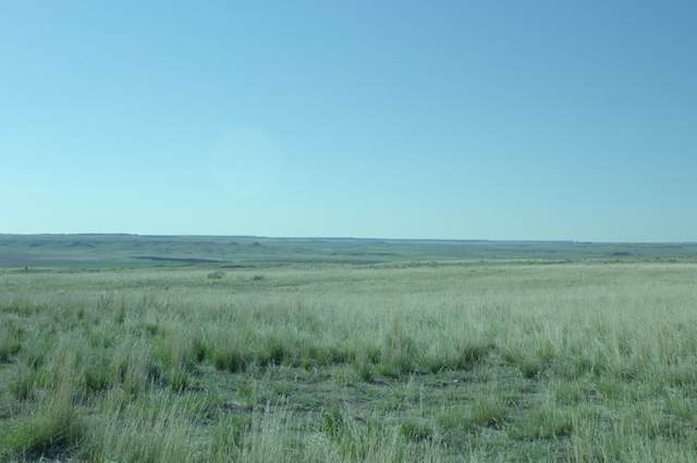 22 Main Drive, Wheatland, WY 82201 (MLS #20202097) :: Lisa Burridge & Associates Real Estate