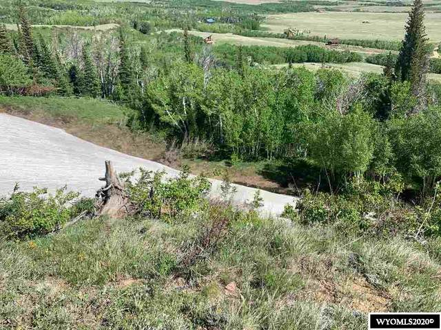 Lot 3 Aspen Highlands Subdivision (First Filing), Elk Mountain, WY 82324 (MLS #20202943) :: RE/MAX The Group