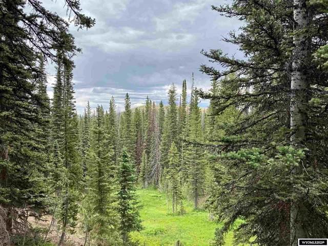 Leadville LC Highway 70, Encampment, WY 82325 (MLS #20213823) :: RE/MAX Horizon Realty