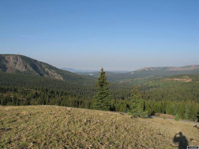 Acreage Wy 70, Encampment, WY 82325 (MLS #20216216) :: RE/MAX The Group