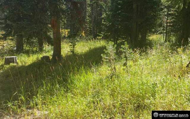 45 Overlook Retreat, Elk Mountain, WY 82324 (MLS #20113937) :: Lisa Burridge & Associates Real Estate