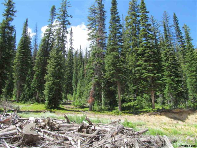 12 Overlook Retreat #2, Elk Mountain, WY 82324 (MLS #20134556) :: Lisa Burridge & Associates Real Estate