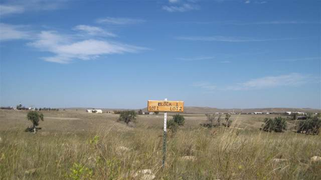 80 Antelope Court, Buffalo, WY 82834 (MLS #20152605) :: RE/MAX The Group