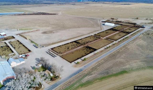 4 S CATTLE Company 79 Drake Road, Wheatland, WY 82201 (MLS #20164232) :: RE/MAX The Group