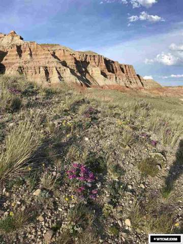 lot 61 Table Mountain Crt Court, Dubois, WY 82513 (MLS #20186273) :: Real Estate Leaders