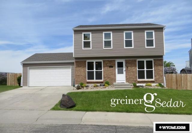 4420 S Ash Street, Casper, WY 82601 (MLS #20183022) :: Lisa Burridge & Associates Real Estate