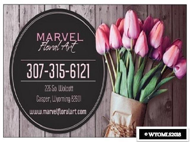 225 S Wolcott Street, Casper, WY 82601 (MLS #20185945) :: RE/MAX The Group