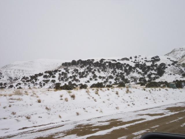 #25 Cattle Drive, Rock Springs, WY 82901 (MLS #20190295) :: RE/MAX The Group