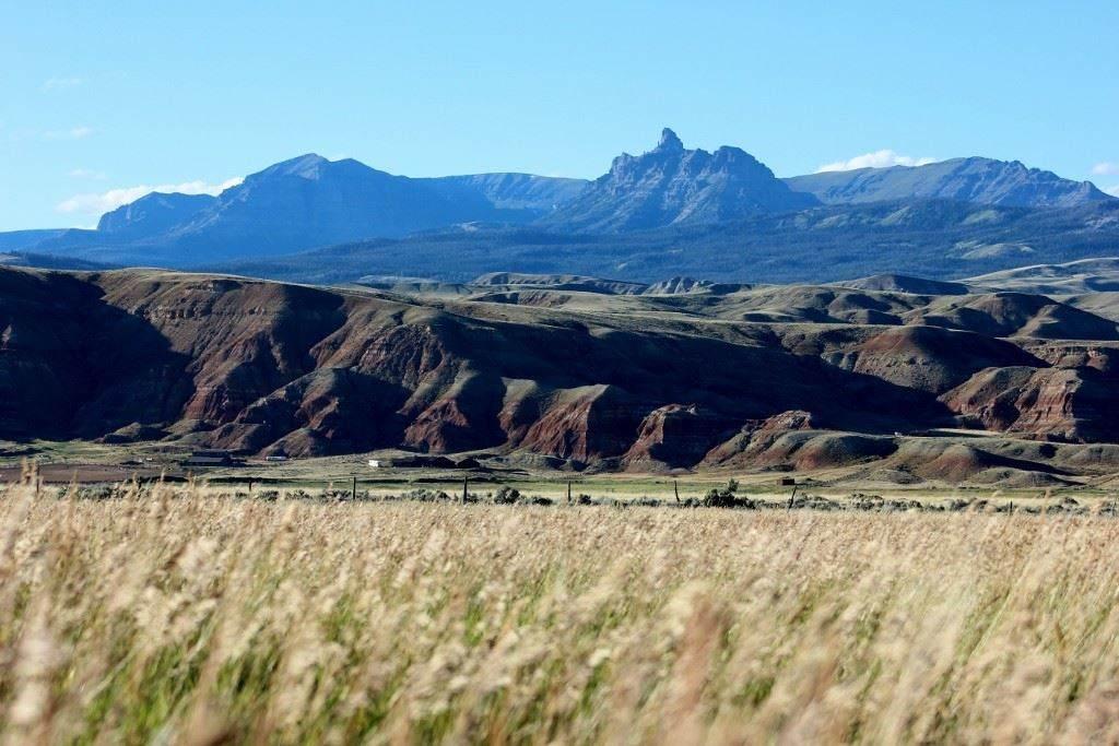 TBD Bald Mountain Road Lot 4 Ramshorn View Sbdv. - Photo 1
