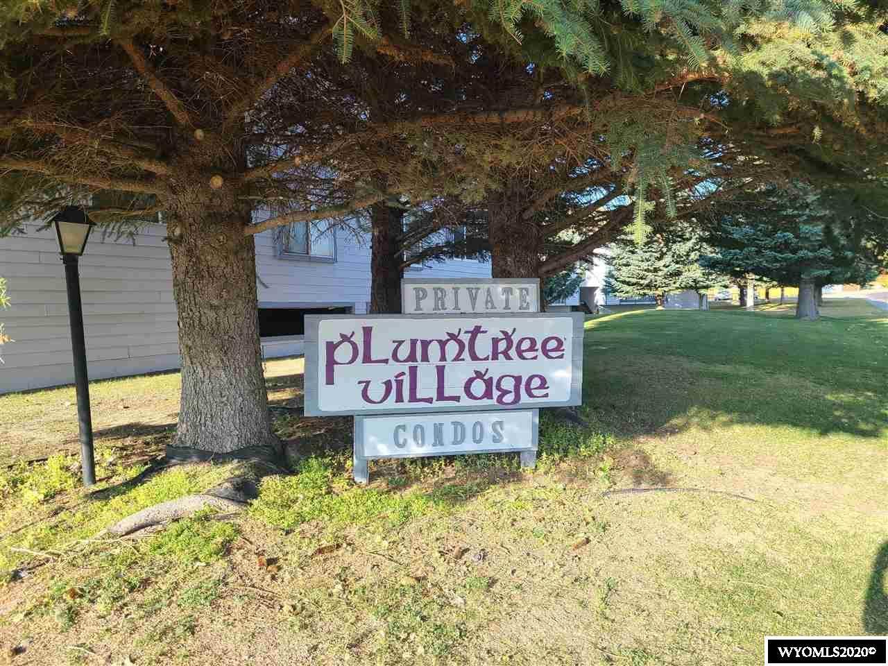 2916 Plumtree - Photo 1