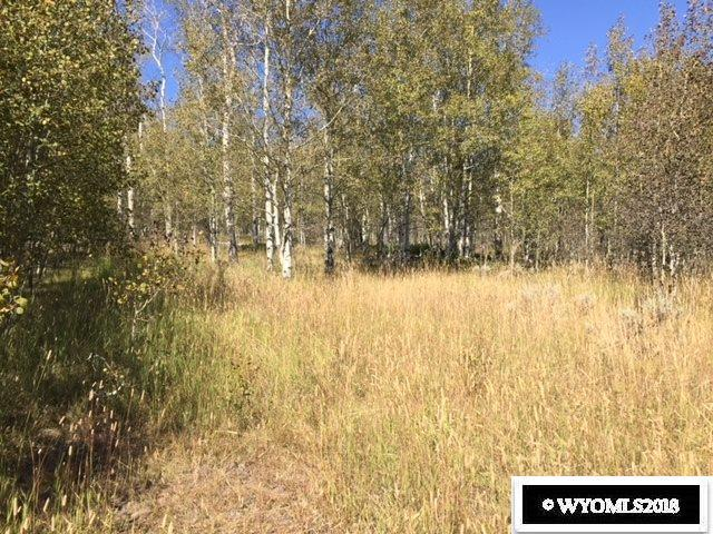 Casper Mtn, Casper, WY 82601 (MLS #20184281) :: RE/MAX The Group