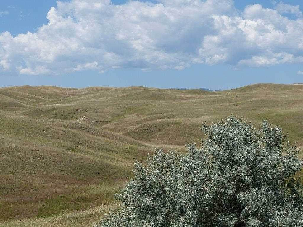 66+acres on.. Elsom Ranch Rd - Photo 1